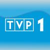 TVP 1.png