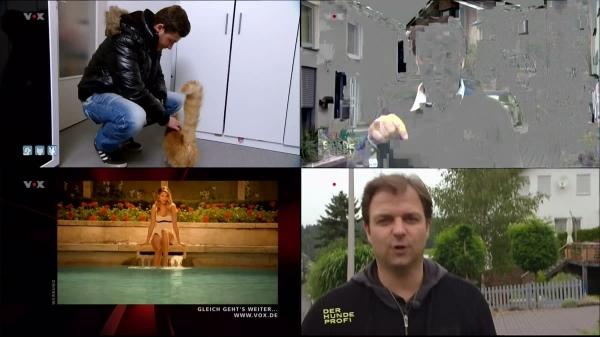Der Hundeprofi - VOX - 2013-08-03.png