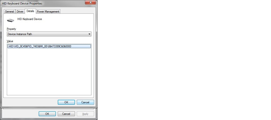 HID Keyboard Instance Path.jpg